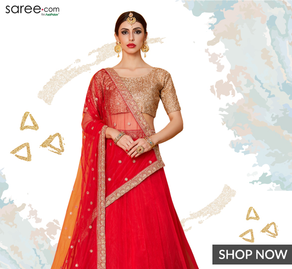 Red Net Lehenga Choli with Zari Golden Border